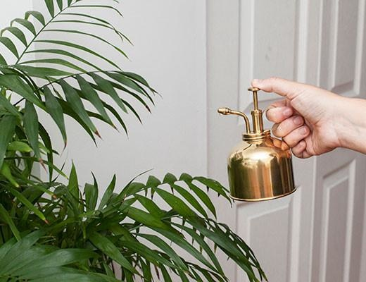 kikkerland Plant Mister Brass