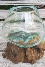 Glass Bowl Wood Medium