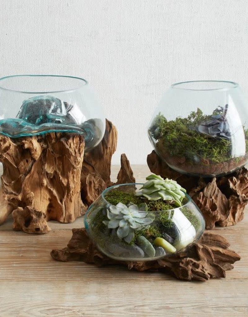 Glass Bowl Wood Medium