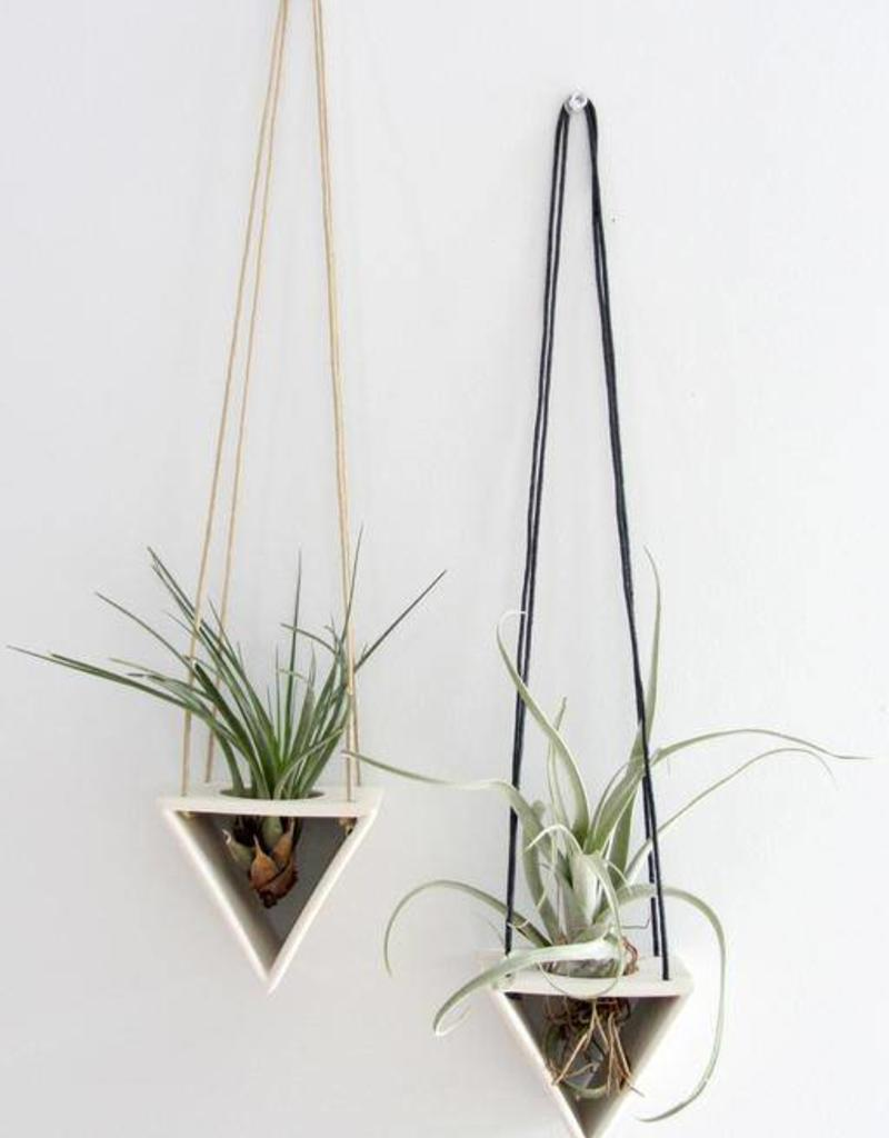 Benotti Air Plant Hanger - Triangle