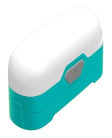 LR30 High CRI Dual Output Lantern