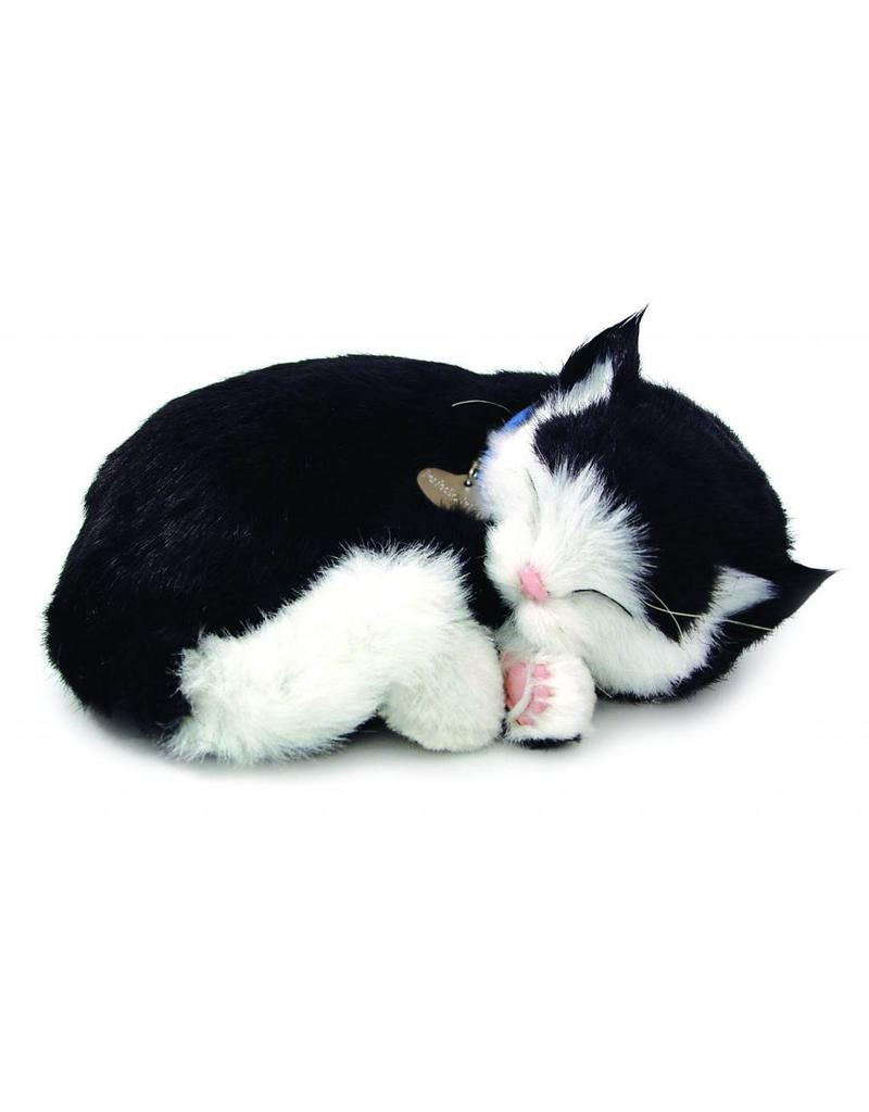 Perfect Petzzz Perfect Petzzz Black & White Shorthair
