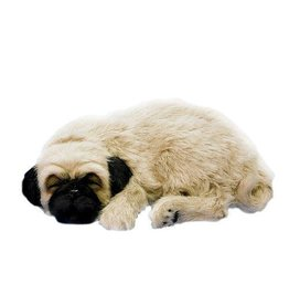 Perfect Petzzz Perfect Petzzz Pug
