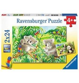 Ravensburger Sweet Koalas & Pandas 2x24 pzl