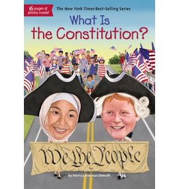Penguin What is the Constitution?
