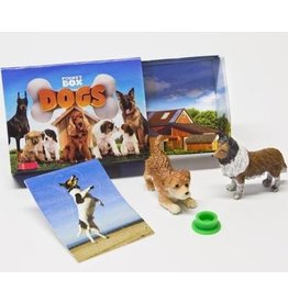 Reeves Pocket Box Dogs