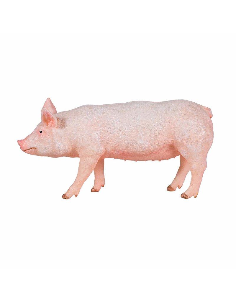 Dr Cool Farm Life WOW - Pig
