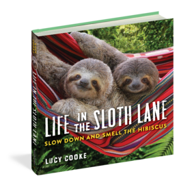 Workman Pub Life in the Sloth Lane