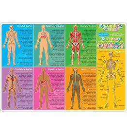 Ashley Productions Human Body Learning Mat