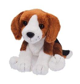 Douglas Sniff Beagle