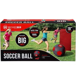 Little Kids Wicked Big Soccer Ball