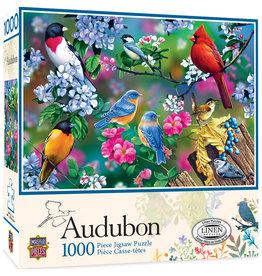 Masterpieces Puzzles Audubon Songbird Collage 1000 pc