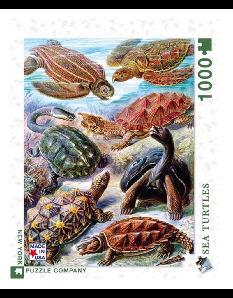 New York Puzzle Co Turtles 1000 pc
