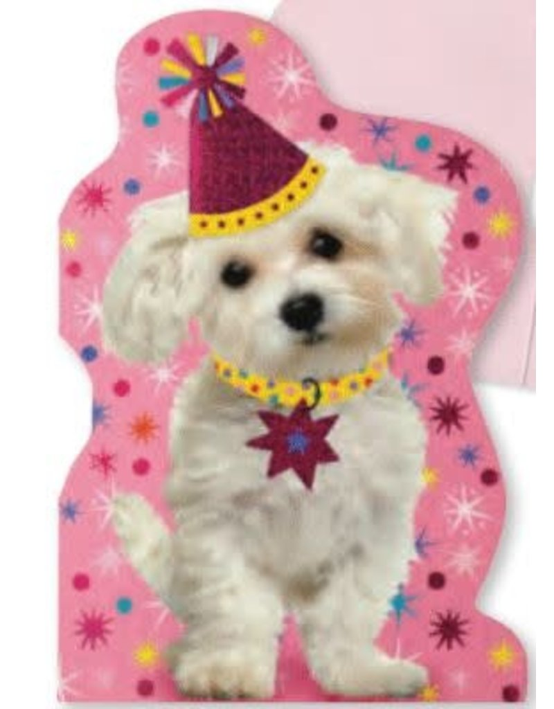 Peaceable Kingdom Foil Puppy Birthday Card