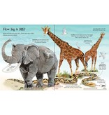 Educational Dev Big Book of Big Animals
