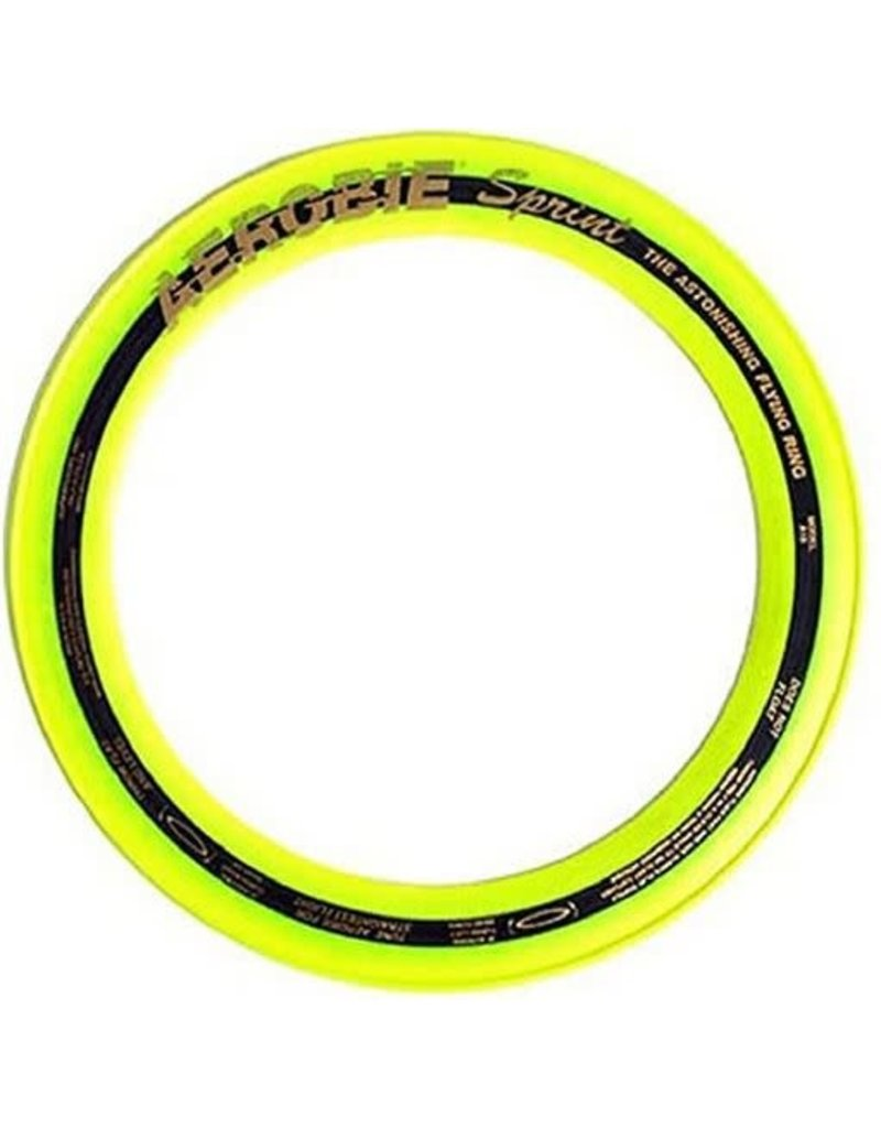 "10"" Aerobie Flying Ring"