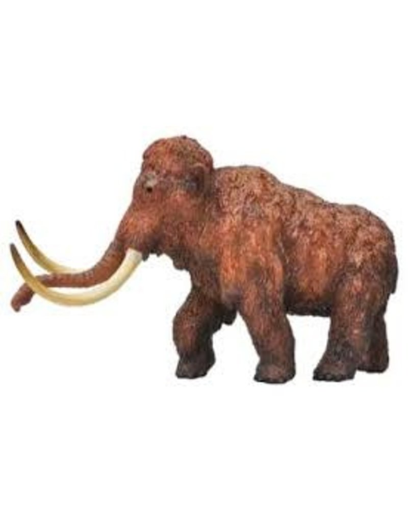 Dr Cool Dinosaur Wow Woolly Mammoth