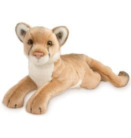 Douglas Kelso Mountain Lion
