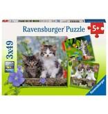 Ravensburger Cuddly Tiger Kittens 3x49