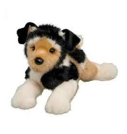 Douglas Moses Terrier Mix
