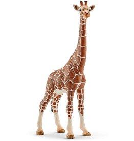 Schleich Giraffe female