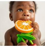 Bendie Clemento the Orange
