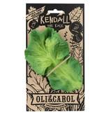 Bendie Kendall Kale Rubber Teether