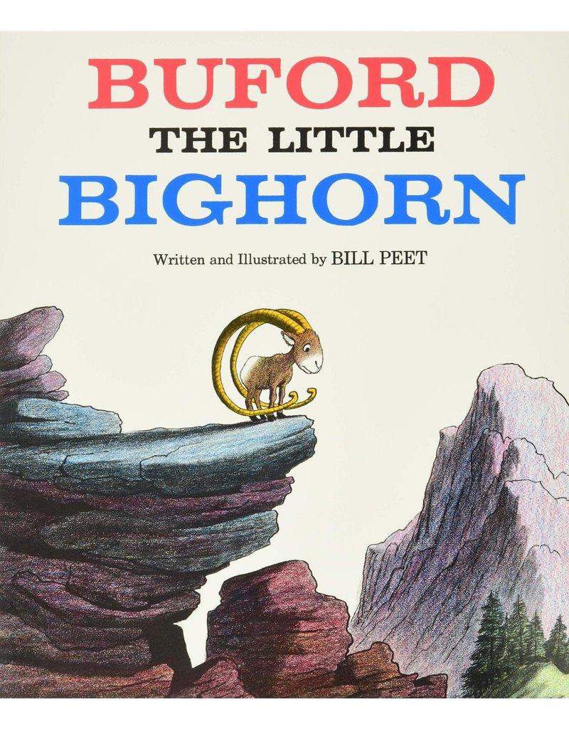 Houghton Mifflin Buford the Little Bighorn