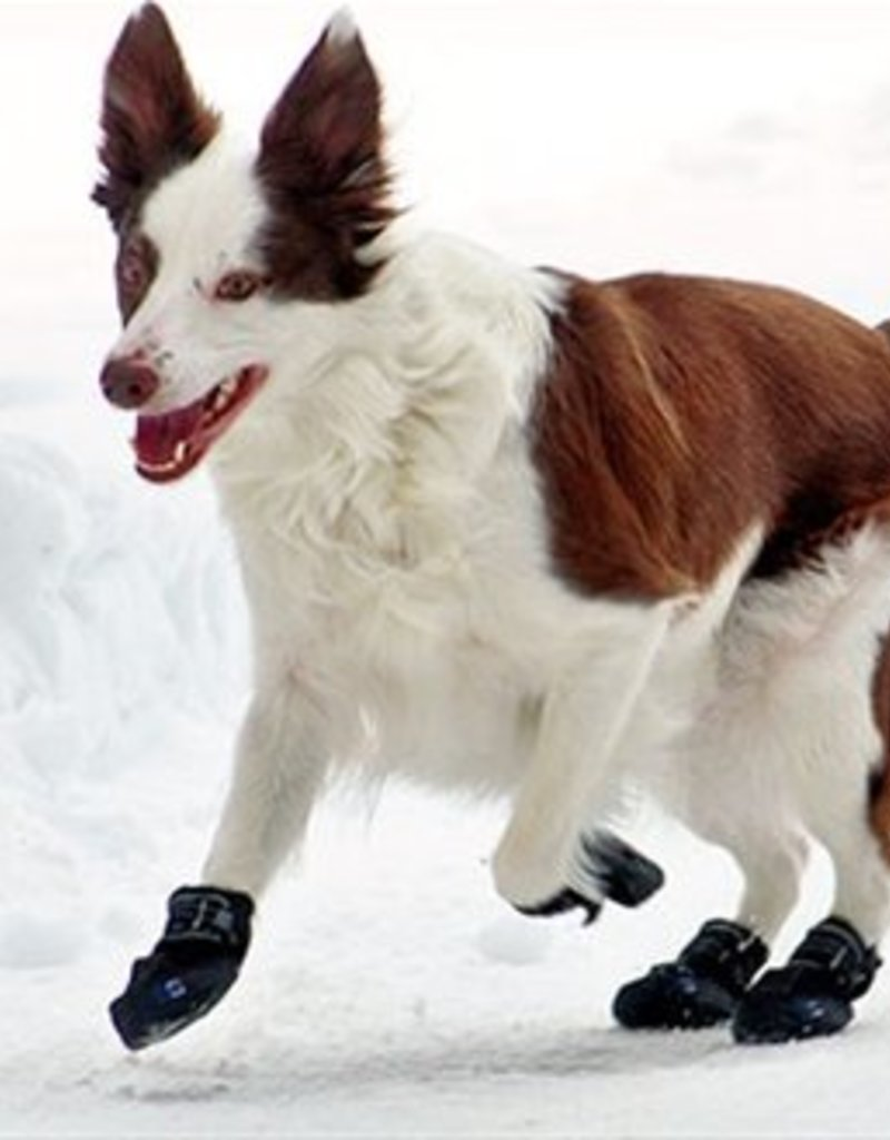 Canine Equipment Ultimate Trail Boots