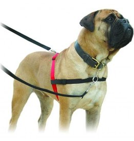 ***$19.99*** IN STORE FINAL SALE *** Halti No-Pull Harness Black& Red Medium