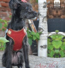 Pretty Paw London BORDEAUX Harness