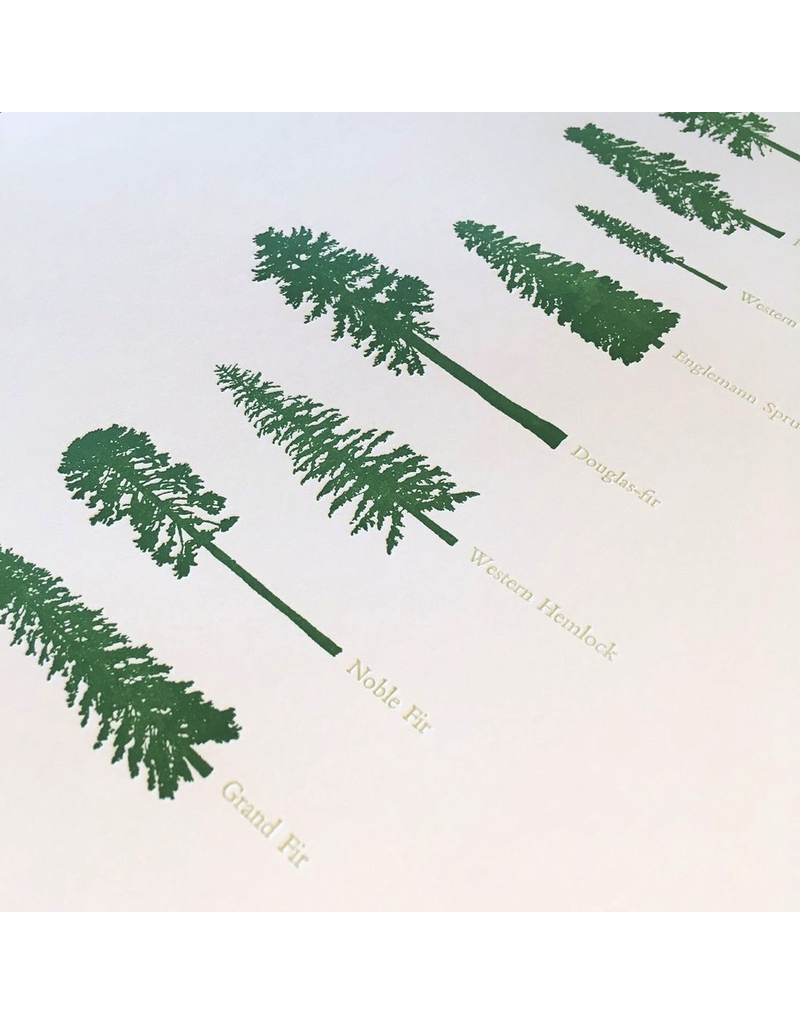 Prints Conifers Letterpress Print