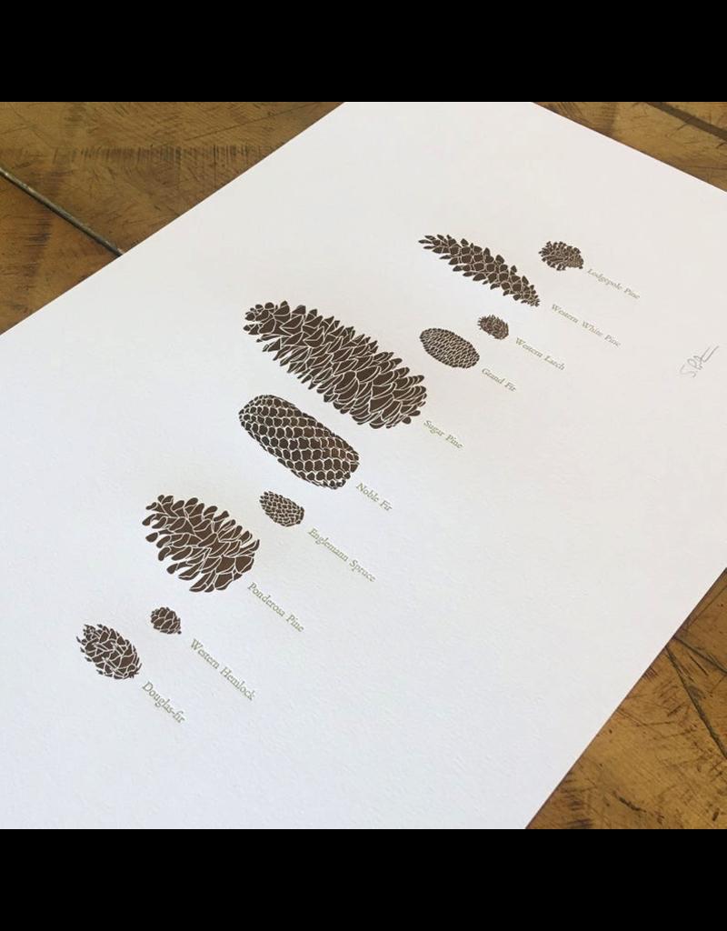 Prints Pine Cones Letterpress Print