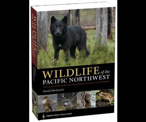 Wildlife Of The Pacific Northwest Budd Finn