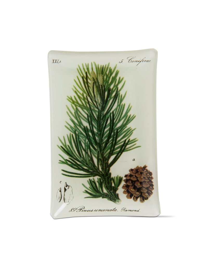 Trinket Dish Archival Pine Bough Glass Plate