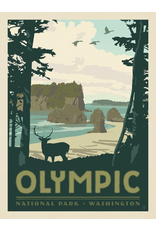 Prints Olympic National Park 11x14 Print