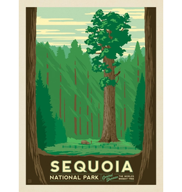 Prints Sequoia National Park 11x14 Print