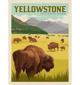 Prints Yellowstone National Park Bison Herd 11x14 Print