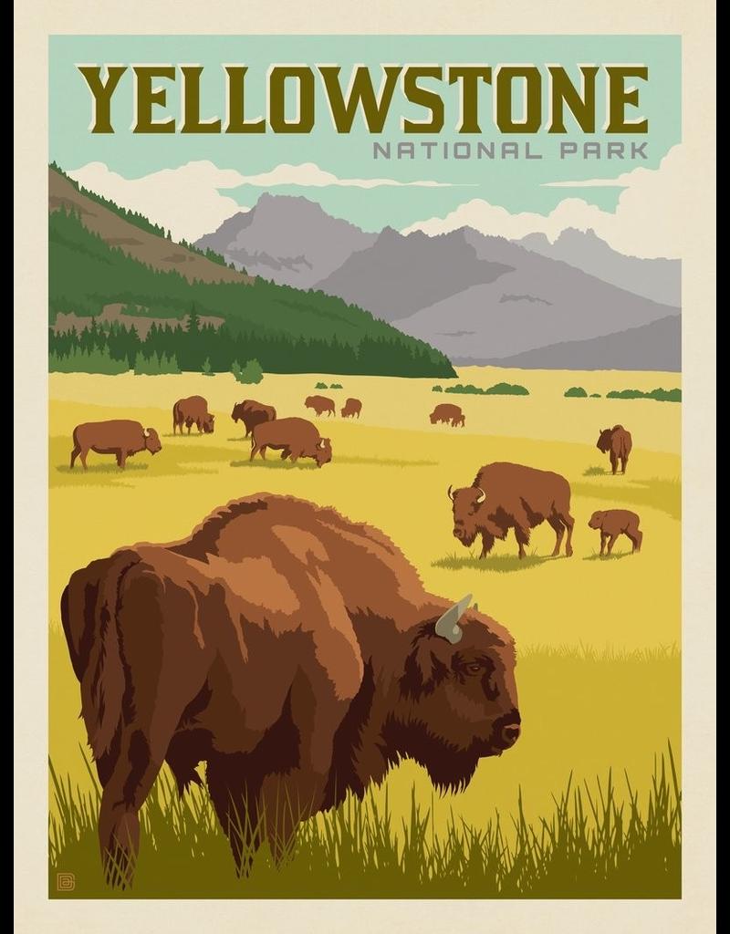 Prints Yellowstone National Park Bison Herd 11x14 Print