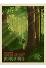 Prints Great Smoky Mountains National Park Old Growth Forest 18x24 Poster