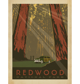 Prints Redwood National Park 18x24 Poster