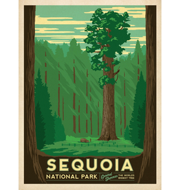 Prints Sequoia National Park 18x24 Poster