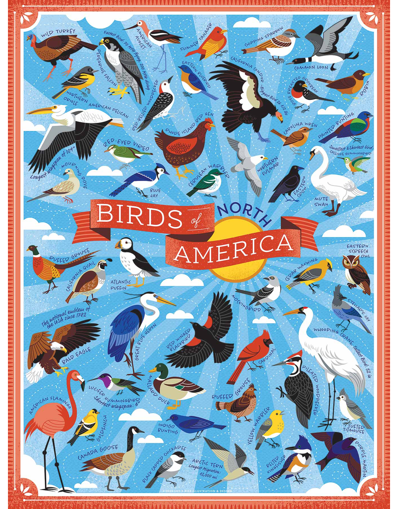 Puzzles Birds of No America Puzzle