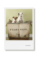 Greeting Cards Bibi & Buster Friendship Card