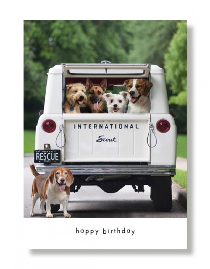 Greeting Cards Dogs In Scout Birthday Card