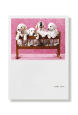 Greeting Cards Labrador Puppies Baby Love Card