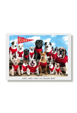 Greeting Cards - Hooray Team Strut Your Mutt Birthday Card