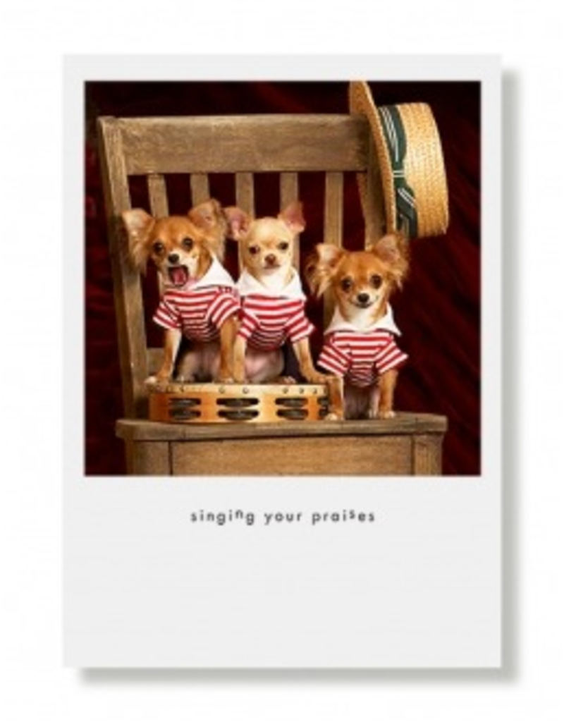 Greeting Cards Three Amigos Thank You Card