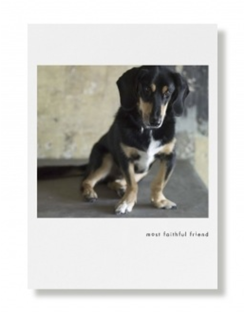 Greeting Cards Walter Friendship Card