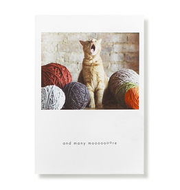 Greeting Cards Sammy Birthday Card
